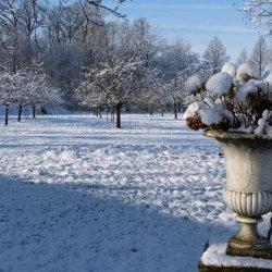 boomgaard winter
